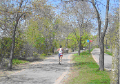 Lake Harriet East Trail